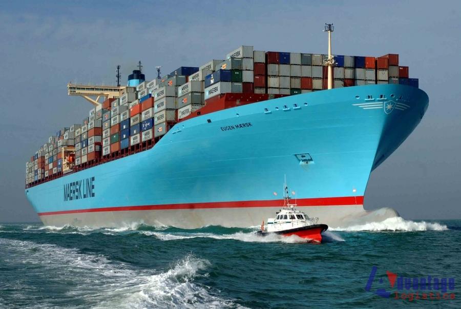 vận tải đường biển_Advantage