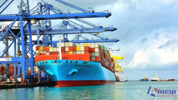 The process of entrusted export - import