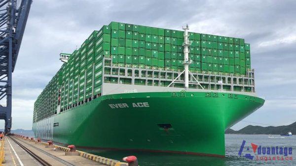 Vận tải biển Sea freight