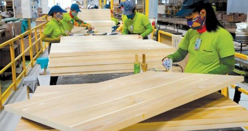 """Đã có quy định gỗ hợp pháp, gỗ Việt """"thẳng tiến"""" vào EU"""
